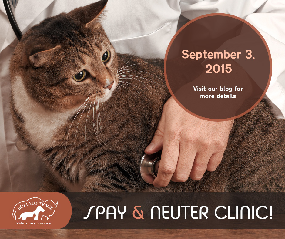 Buffalo Trace Cat Spay & Neuter Clinic